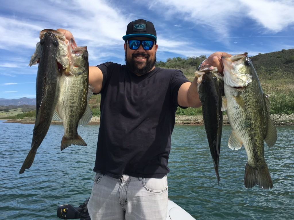 Lake casitas bass fishing guide report 03 14 2016 for Southern california fishing charters