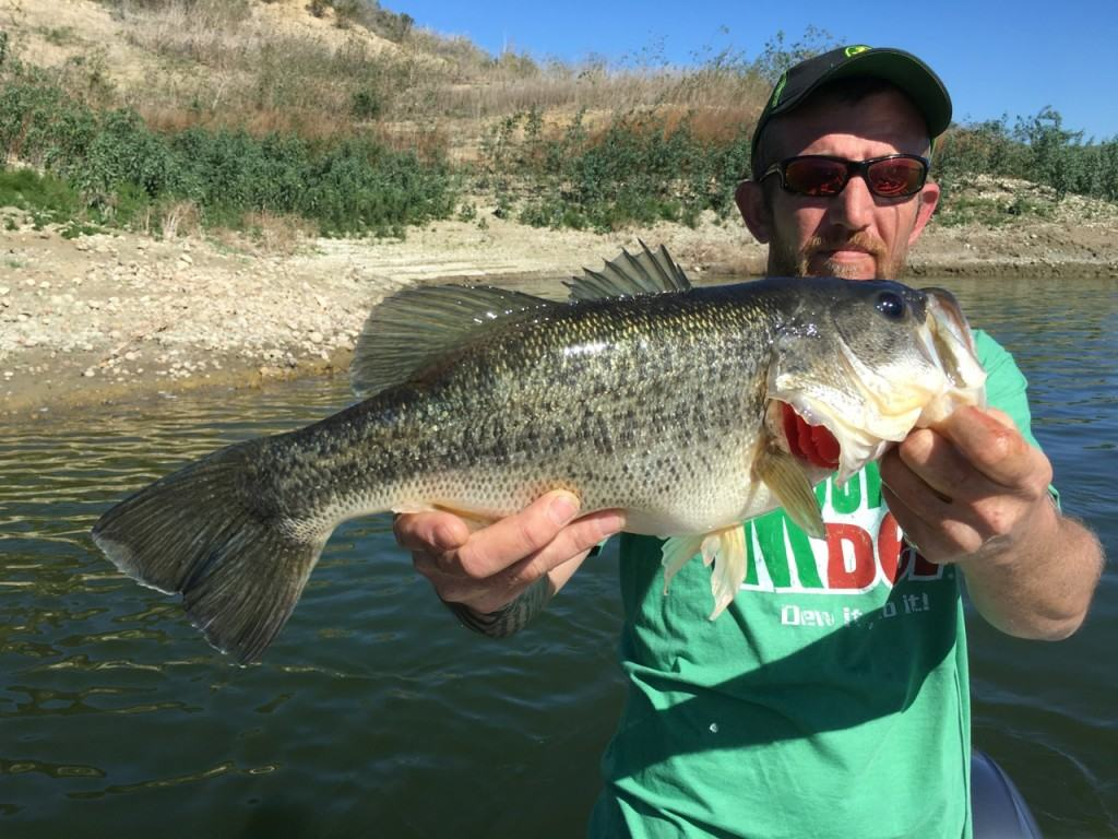Lake casitas fishing guide report 02 13 2016 for Freshwater fishing in southern california